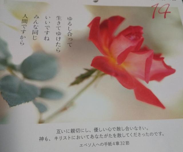 DSC_4906~3.JPG