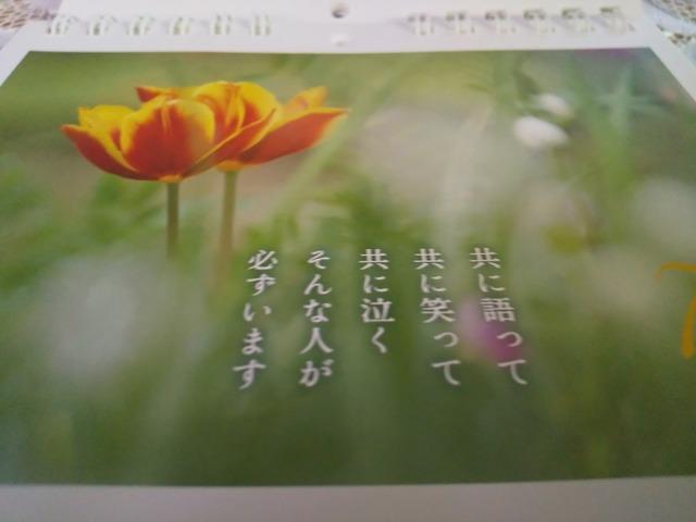 DSC_7124-14d20.JPG