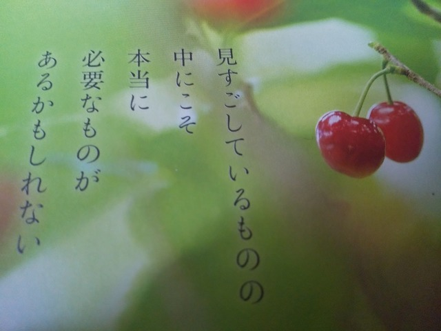 DSC_7202.JPG